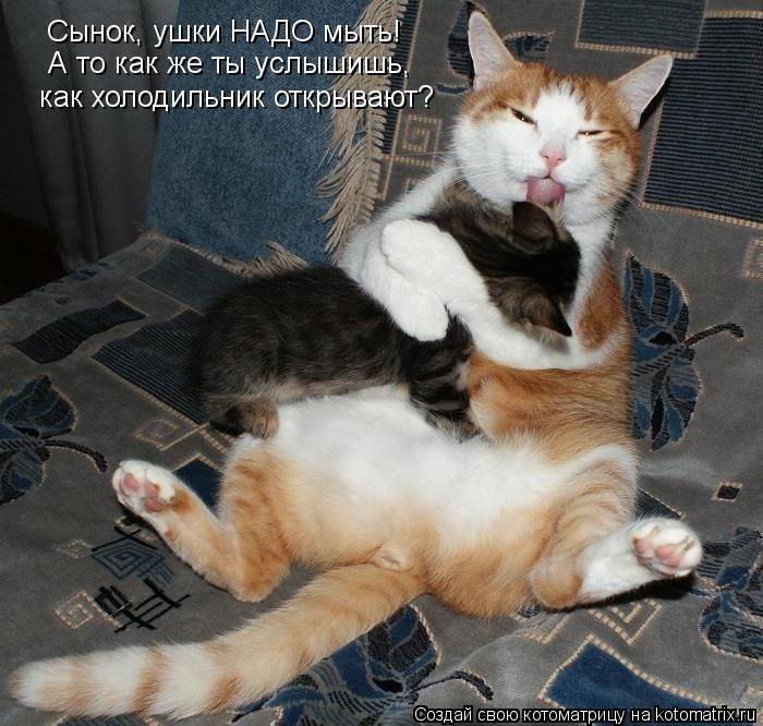 kak-obshchatsia-s-clientami