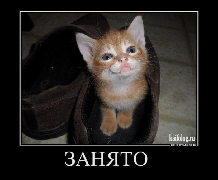 kak-obshchatsia-s-synom