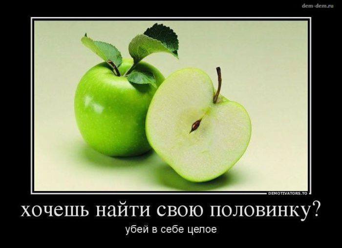 obshchenie-v-sotc-setiakh